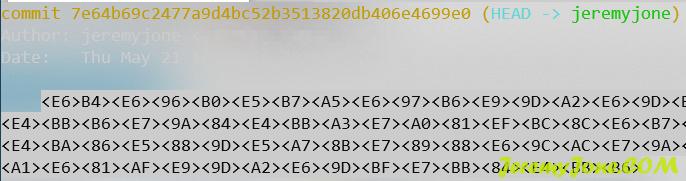 《Terminal中git log不显示中文问题的解决方案》